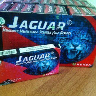 Kapsul obat kuat pria Jaguar